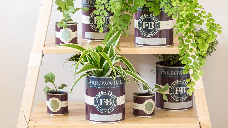 pot-peinture-farrow-bll-et-plantes